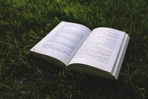 kaboompics.com_Book-on-the-grass.jpg